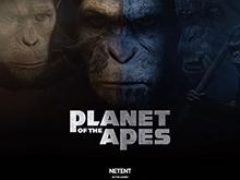 Получи приз на слоте Planet Of The Apes