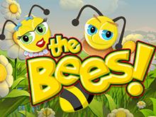 Сорви большой куш в автомате The Bees